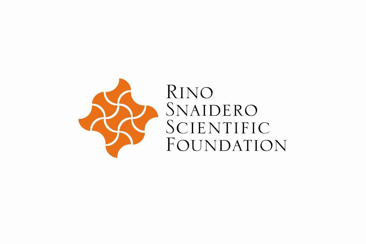 Rino Snaidero Scientific Foundation Annual Conference