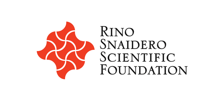 Rino Snaidero Foundation